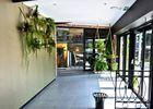 s74c4945-mur-vegetal_bis.jpg