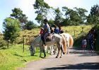 zarlor quiétude à cheval pack 2-4.jpg