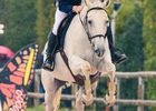 180323-bressuire-concours-obstacle1.jpg