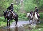 Centre_Equestre_Crinieres_Ouest_Lanvenegen (11).jpg