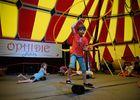 Ophidie_Circus_2016__5_.jpg