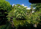 maulevrier-parc oriental-printemps4.JPG