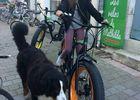Les vélos de mathilde location vélo ile de ré loc.JPG