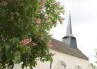 Eglise - Coulonges ©Alain Buchet (5).jpg