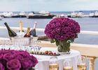 roses_terrasse.jpg