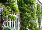 hotel-jardin-loire.jpg