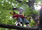Base_plein_air_Le_Blanc_escalade_arbre_La_Roche_Posay.JPG