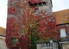 Tour de la Maison-Dieu - Montmorillon ©Béatrice Guyonnet (7).JPG