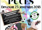 Troc_Puces_PtitsLoups_Gourin_Septembre2018.jpg