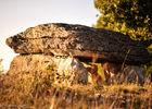 Dolmen de Pech Laglaire Gréalou - GR 65--© Lot Tourisme - C. ORY.jpg