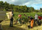 domaine sibille degustation de vin.jpg