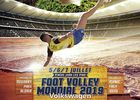 MONDIAL FOOT VOLLEY 2019_.jpg