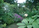 Jardin de Mô - Adriers ©Jardin de Mô (3).jpg