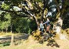 rocher-branlant-jardin-des-chirons-2000bressuirais (pw) 5237.jpg