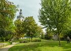 Parcchateau-pelouse-WBT-JPRemy.jpg