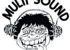 multisound-mons (5).jpg