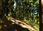 Hell Bourg - Cap Anglais - Gite du Piton Des Neiges-10.jpg