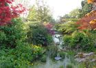 photo du jardin du beau paysDSC03447.JPG