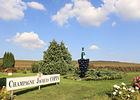 Champagne Jacques Copin ©Clément Richez pour l'Office de Tourisme de l'Agglomération de Reims (6).jpg