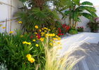 1   jardinière.JPG