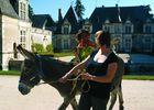 A Dos D'âne devant le château de Villesavin