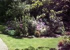 jardindecistus-rhodedendrons-sit.jpg
