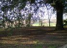 Grand parc arboré