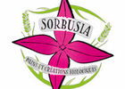 Logo Sorbusia