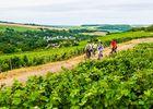 Balade en vélo dans les vignes du sud de l'AIsne