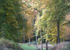 Foret de Retz en automne © OT Villers-Cotterets (16)
