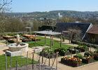 Jardin Riomet - Crédit Mairie CT