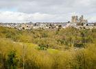 Un vaste espace vert en pleine ville