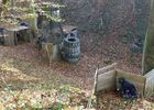 Paintball © Tactical Games JPG (7)