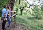 Arboretum_Craonne_Chemin_des_Dames