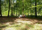Aire de pique-nique de Malva - foret de Retz © OT Villers-Cotterets (9)
