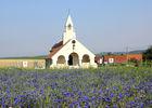 Mémorial 2015 II < Cerny-en-Laonnois < Aisne < Picardie
