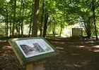 Arboretum 2015 I < Craonne < Aisne < Picardie