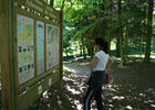 Arboretum 2015 II < Craonne < Aisne < Picardie
