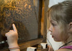 Les ateliers de l'abeille
