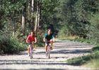 A vélo dans la forêt