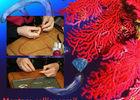 Chalon - Atelier Bijou Créatif - 2018 - Art - Artisanat - Bijoux - Cdt ABC (7)