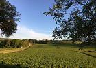 Les-Maisons-de-Chamirey-Mercurey (12)