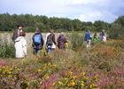 Balade-nature-tourbi--re-Marcheurs