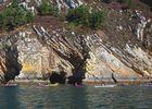 Découverte nature en kayak