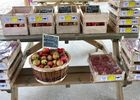 pommes-2018----c--Domaine-des-rouges-terres