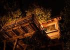 Cabanes dans les bois - Villalier_8