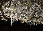 Le Buisson de Cadouin - Grottes de Maxange