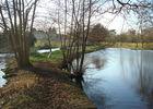 L'Argent et le vieil étang