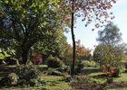 arboretum-13