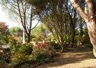 jardin-cistus-10